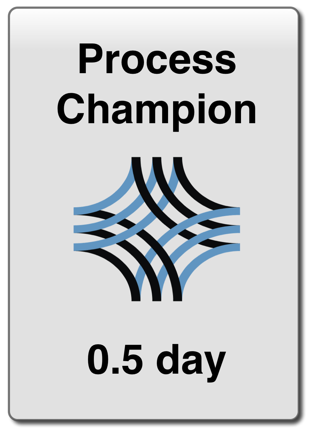 Process Champion Training
